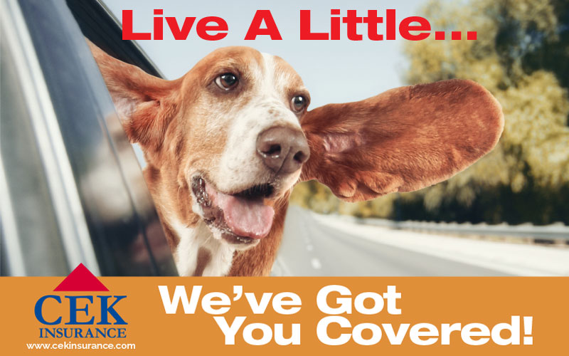Marketing Ad Design for CEK Insurance Lawrence Kansas by The PixNinja Un Agency